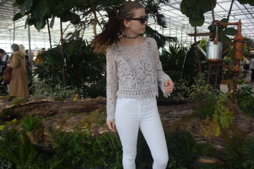 Garden Dreams (2)
