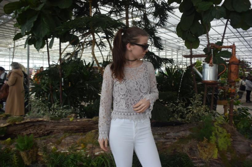 Garden Dreams (4)