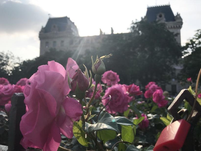 Genney darling Paris Photo Diary (15)
