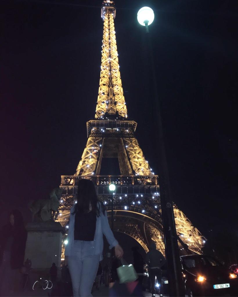 Genney Darling Paris Photo Diary (23)